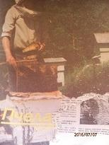 Пчеларство. Бр. 7 / 1990
