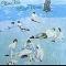 Elton John - Blue Moves / 2LP