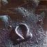 OMEGA 12 - A Fold Arnyekos Oldalan