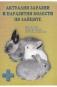 Актуални заразни и паразитни болести по зайците